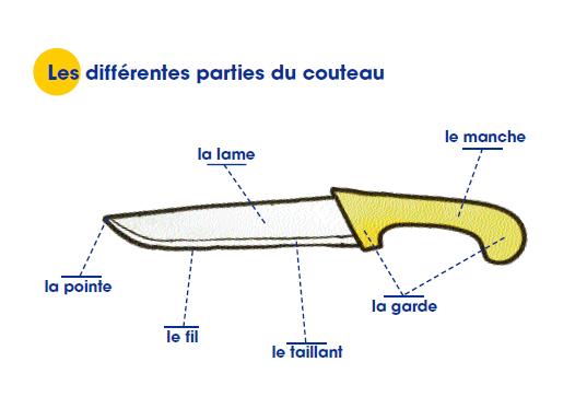 Différentes partie du couteau